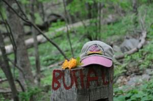 Buffalo_Mt_2015